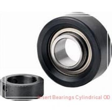 EBC ER20  Insert Bearings Cylindrical OD